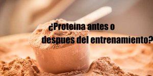 Tomar proteinas antes o después de las pesas